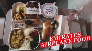 Airplane Food Emirates EK004EK015 London Dubai Food Review