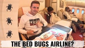Review AIR INDIA 787 Business Class is it really