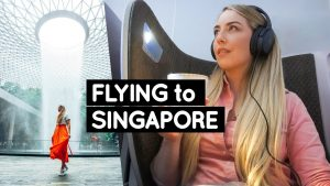 SINGAPORE Travel Guide: SIA Business Class & Jewel | Little Grey Box